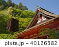新緑の談山神社 40126382