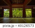 新緑の談山神社 40126573