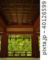 新緑の談山神社 40126599