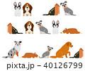 かわいい犬のボーダーセット4 40126799