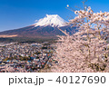 富士山 桜 春の写真 40127690