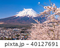 富士山 桜 春の写真 40127691