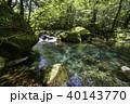 菊池渓谷 清流 新緑の写真 40143770