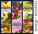 くだもの フルーツ 実のイラスト 40144322