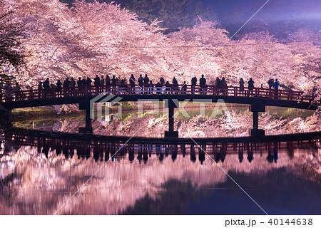 弘前公園の桜 西濠 春陽橋 リフレクション 40144638