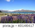 テカポ 風景 テカポ湖の写真 40146417