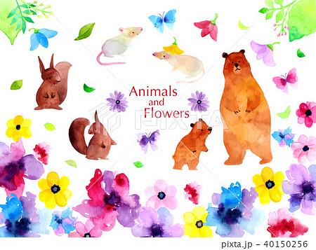 動物と花のイラスト 40150256