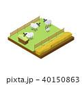 ひつじ ヒツジ 羊のイラスト 40150863
