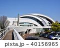 東京辰巳国際水泳場 40156965