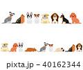 いろいろな犬のボーダーセット5 40162344