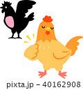 鶏 胸肉 鶏肉のイラスト 40162908