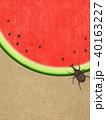夏 スイカ 和紙のイラスト 40163227