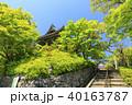 善峯寺 新緑 春の写真 40163787