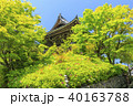 善峯寺 新緑 春の写真 40163788