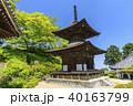 善峯寺 新緑 春の写真 40163799