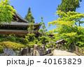 善峯寺 新緑 春の写真 40163829