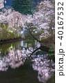 上田城跡公園 桜 夜桜の写真 40167532
