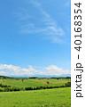 青空 空 丘の写真 40168354