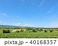 青空 空 丘の写真 40168357