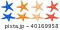 ひとで ヒトデ 海星のイラスト 40169958