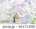 静峰ふるさと公園 八重桜まつり 八重桜の写真 40171990
