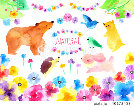 動物と自然のイラスト 40172453