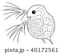 ミジンコ キャラクター 横から見たところ ぬりえ 40172561