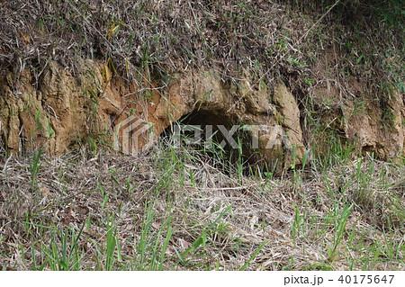 戦時中の拳銃が発見された久末の防空壕跡 40175647