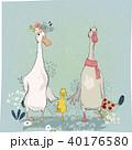 ベクトル 鳥 イラストのイラスト 40176580
