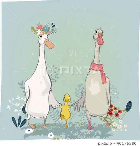 set with cute farm birds 40176580