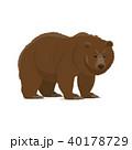 くま クマ 熊のイラスト 40178729