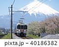 御殿場線 御殿場付近の富士山と桜(313系普通列車) 40186382