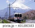 御殿場線 御殿場付近の富士山と桜(313系普通列車2) 40186383