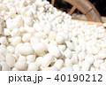 White silkworm cocoon 40190212