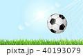 サッカーボール 草 芝のイラスト 40193079