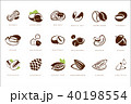 Name nuts set, peanut, hazelnut, walnut, brazil nut, coffee bean, coconut, pecan, chickpeas 40198554