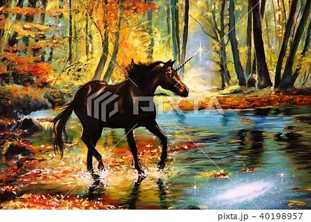 シリウスの森 40198957