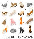 ねこ ネコ 猫のイラスト 40202320