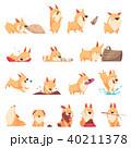 動物 遊び わんこのイラスト 40211378