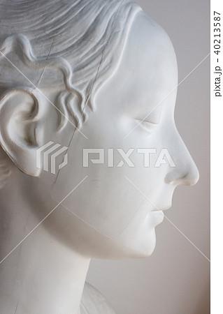 石膏像 横顔 40213587
