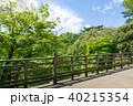 森林 新緑 バルコニーの写真 40215354