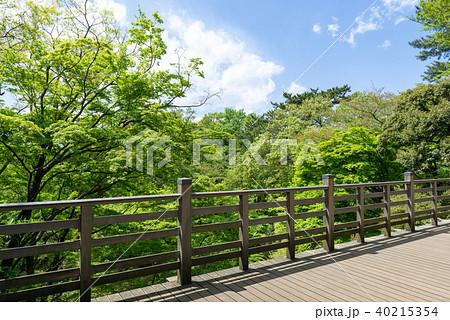 森の中の日本的なバルコニー 40215354