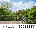 森林 新緑 バルコニーの写真 40215355