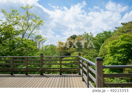 森の中の日本的なバルコニー 40215355