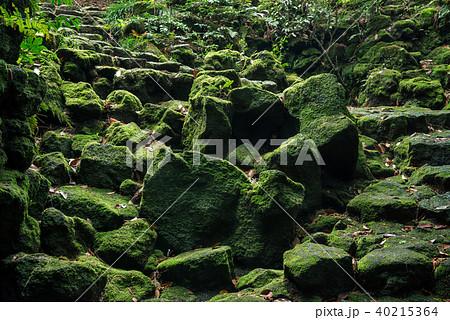 駒門風穴、富士山の麓、石の階段 40215364