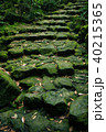 階段 石段 苔の写真 40215365