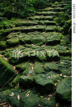 駒門風穴、富士山の麓、石の階段 40215365