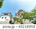 唐津城 舞鶴城 城の写真 40216958