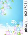 朝顔 花 夏のイラスト 40217054