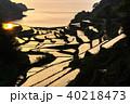浜野浦の棚田 棚田 田んぼの写真 40218473